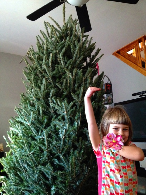 Tree_audrey